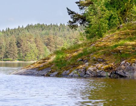 Летняя рыбалка в Карелии