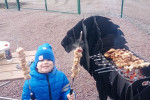 priozersk_park_10.jpg